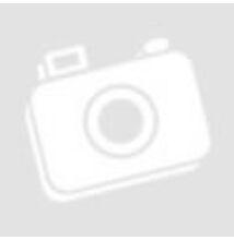 MOTOREX Power Synt 4t 10w-60 1liter